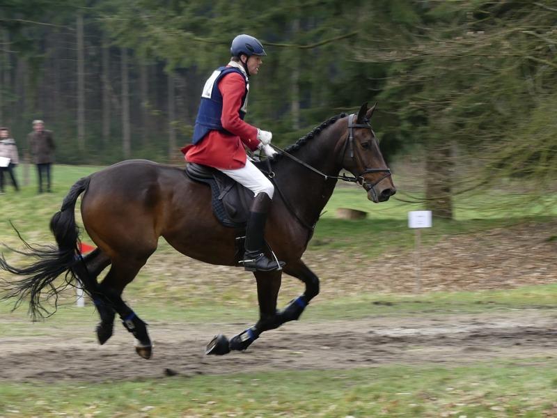 Ejercicios para mejorar la postura al montar a caballo